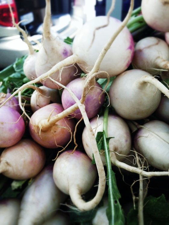 purple turnips